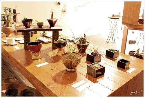 きらきら*ら ブログ-+Plants'09