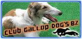 CLUB GALLOP DOG'S