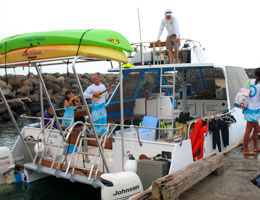 ホリデイアロハ ハワイ スタッフのブログ-dolphin01