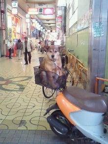 西岡利晃オフィシャルブログ-200905281357000.jpg
