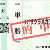 金鯱賞回顧 サクラメ…