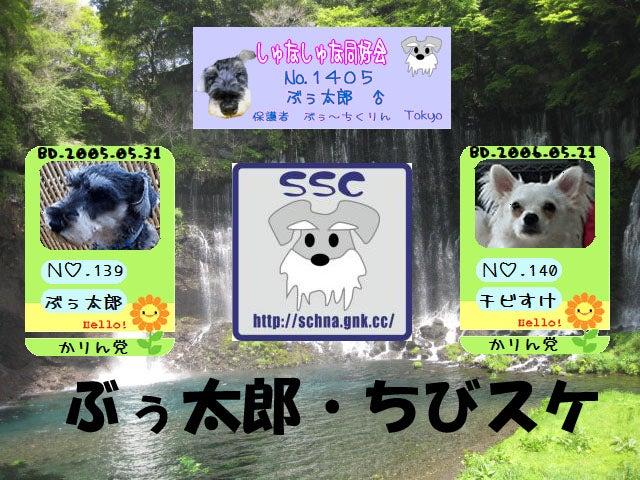 """what""""s"""" ぶぅ~ちくりん&チぃ~たん!あっ・・・ひゃい!うぅ~ぅぅワン!"""