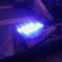 LEDでライトアップ…