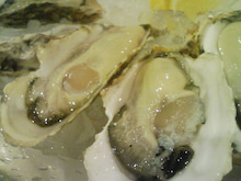 ニコタマ定食-本日の生牡蠣その2(兵庫県 室津産)