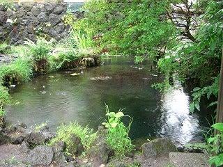 あひるるる-お釜池