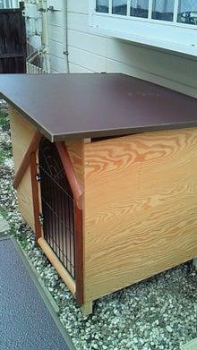建築士の日記-犬舎組立