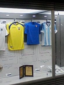 あゆ好き2号のあゆバカ日記-2002W杯.jpg