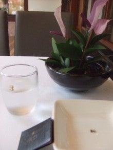 お昼の花道 ランチ・ふわふわスイーツ好き主婦の日常と非日常の間