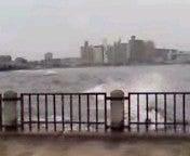 腐ってやがる・・・ぷログ-湘南の波