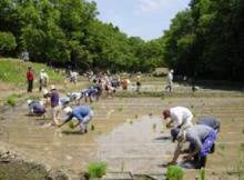 社会起業支援サミットin茨城-アサザ基金画像3