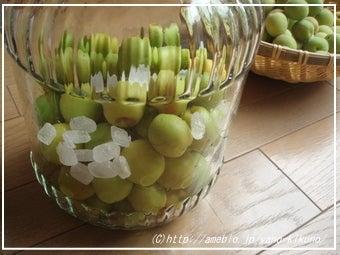 矢賞味期限,保存方法-梅ジュースの作り方、梅シロップレシピ3