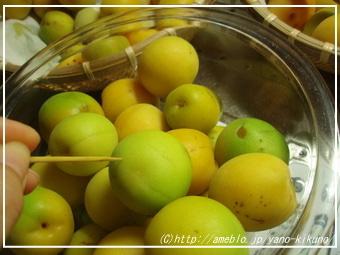 賞味期限,保存方法a-梅ジュースの作り方、梅シロップレシピ2