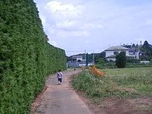 葵と一緒♪-TS3D2333.JPG