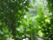 酒とホラの日々。-窓の雨