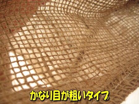 マロのブログ-a0015164_1413651