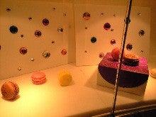 エマ美容室の[チョキ×チョキ日記]-きれいなディスプレイ
