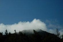 小笠原父島エコツアー情報    エコツーリズムの島        小笠原の旅情報と父島の自然-6.25
