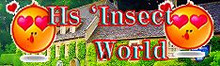 Hs`InsectWorld
