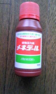 中澤裕子オフィシャルブログ「NakazaWorld」powered by Ameba-090630_1627~01.jpg