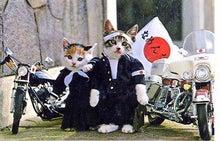 はぐれ獣医 純情派~異論!ワン論!Objection!~-0909