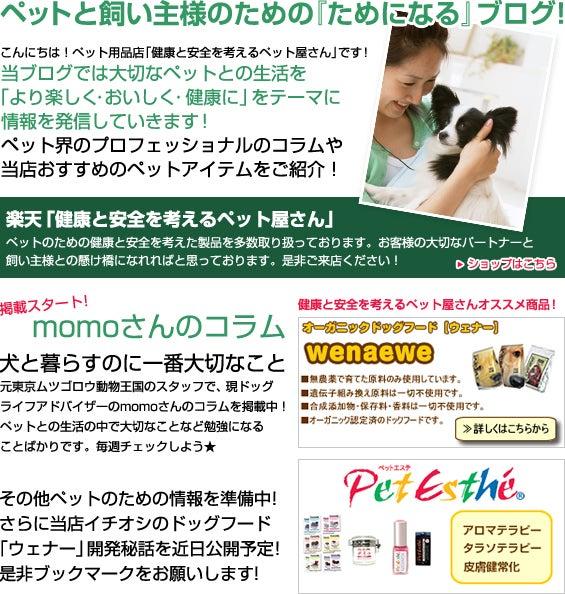 ペット屋さんのブログ-top