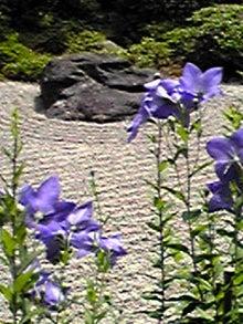 数楽者のボヤキ・ツブヤキ・ササヤキ-中学 数学 道徳 Mathematics Puzzles--090704_1347~01.JPG