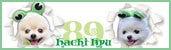 ☆Dress up Pome☆-89ブログ