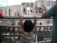 二児のママになっちゃった!~のんびり子育て日記~-北極クマ