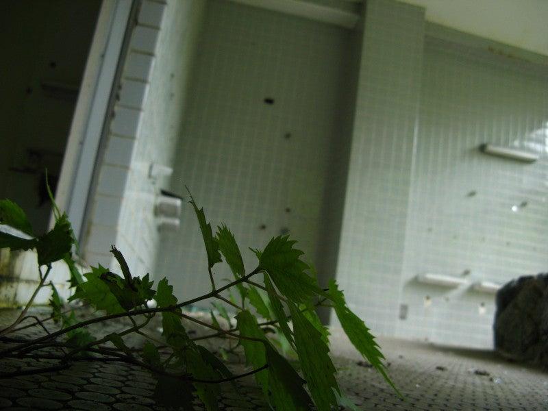 【趣味とか】 ちくわぱん 【日常とか】 writing by 写楽斎- 浴室 ぼくたちの秘密