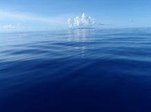 小笠原父島エコツアー情報    エコツーリズムの島        小笠原の旅情報と父島の自然-7.24