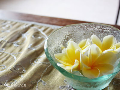 ロザブロ  ウェディングとギフトのお花とワタシ-壁紙