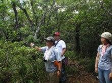 小笠原父島エコツアー情報    エコツーリズムの島        小笠原の旅情報と父島の自然-7.29