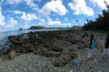 小笠原父島エコツアー情報    エコツーリズムの島        小笠原の旅情報と父島の自然-7.31