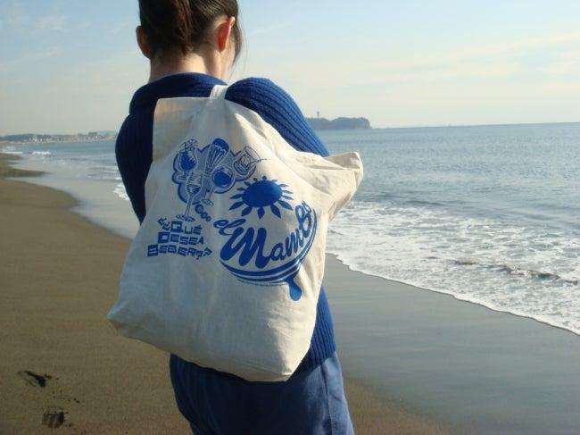 いろりや9640ブログ~高知県黒潮町LOVEな毎日をお届け~-辻堂海岸から江ノ島をのぞむ