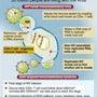 エイズのひどいゲノム…
