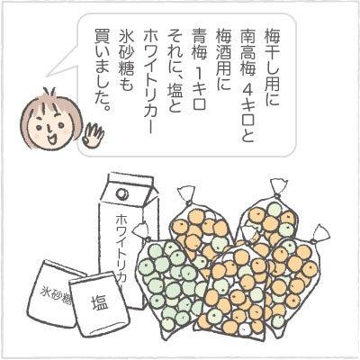 日々の泡・絵日記-うめ01