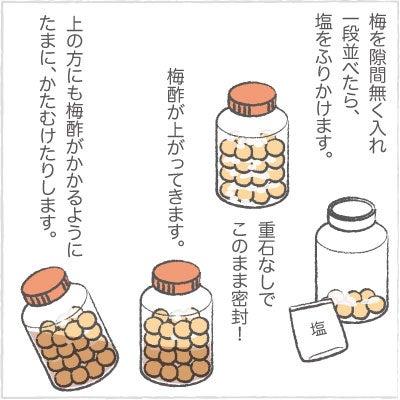 日々の泡・絵日記-うめ05