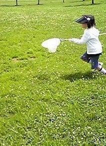 Grumpy Monkey(不機嫌なおさるさん)の観察日記-catching butterfly