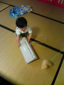 Grumpy Monkey(不機嫌なおさるさん)の観察日記-mini taking keyboard_Aug6_2
