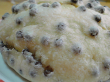 newよつママの菓子パンna毎日。-SN3D2573.jpg