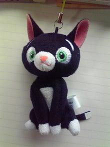 臣の野良猫仕事日記-200908121001000.jpg