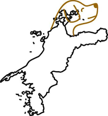 ササブログ-愛媛県 犬