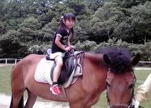 上賀茂からこんにちは。-aya馬