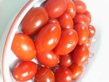 日々 更に駆け引き-収穫したミニトマト