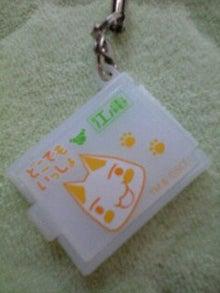 ずれずれブログ…湘南で猫と暮らせば…-090822_1454~0001.jpg