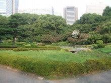 カルマンギアのある生活-東御苑-日本庭園