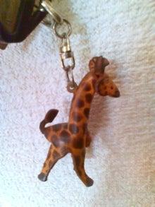 lovelygiraffe-20090809115538.jpg