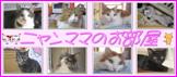 8匹のネコと毛だらけの毎日♪2