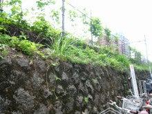 こぶた(・@・)ぶろぐ-線路沿い