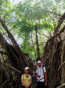 小笠原父島エコツアー情報    エコツーリズムの島        小笠原の旅情報と父島の自然-8.26